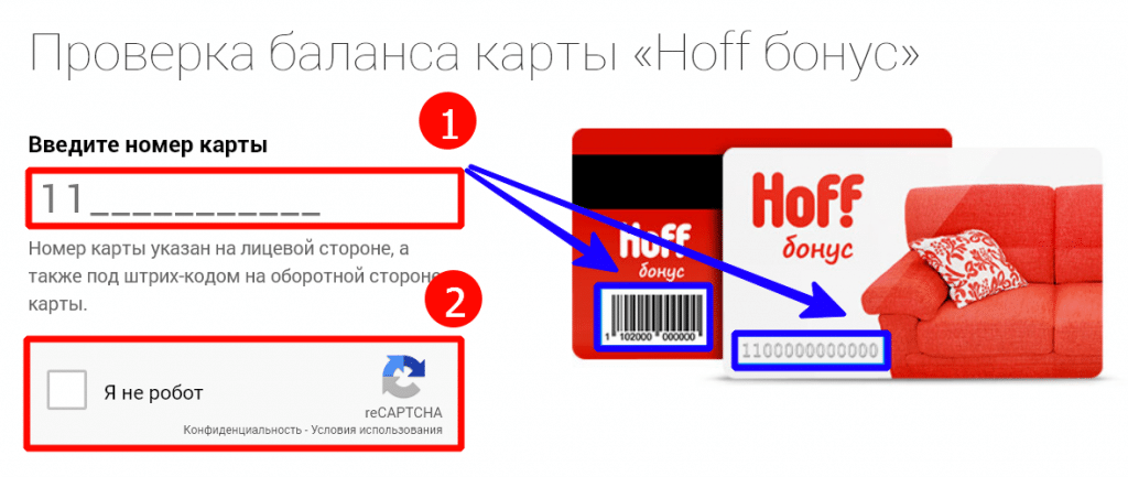 Номер Телефона Магазина Hoff