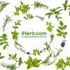 Оформление заказа на iHerb: процедура, условия бесплатной доставки